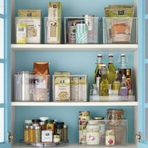 http://www.containerstore.com/s/kitchen/refrigerator-freezer/linus-pantry-binz/12d?productId=10032358